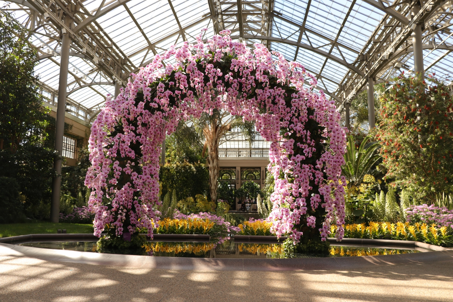 Orchid Arch, Longwood Gardens, Orchid Extravaganza