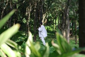 Tai Chi in Lianhuashan park, Shenzhen China