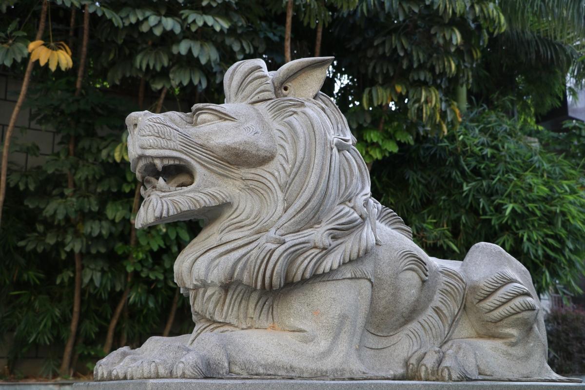 Shenzhen Lion