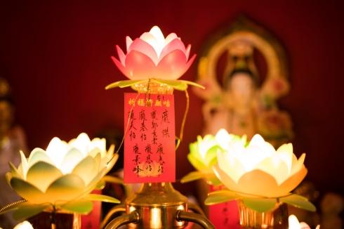 Jade Voice Palace, Lotus Lights